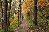 Iowa, Effigy Mounds National Monument, trail to Great Bear and Little Bear Mound groups