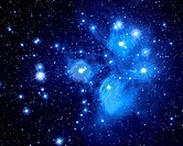 The Pleiades Star Cluster is probably the most famous cluster. It is aslo known as the Seven Sisters and the Subaru.