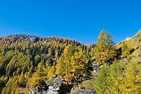 Italy, Piedmont, Devero alp, Alpe Devero