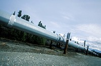 Trans_Alaska Pipeline at Route 4, near Paxson, AK