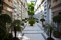 Many Apartments ahve a central Courtyard - Architecture in Roma District of Mexico City DF