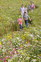 Smiling multi_generation family holding hands and walking among wildflowers in sunny meadow