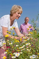 Smiling couple picking wildflowers