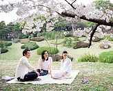 Family including girl 12_13 sitting in park under full bloomed cherry blossom