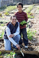 Father and son working in a vegetable garden