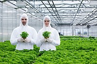 Germany, Bavaria, Munich, Scientists in greenhouse with parsley plant (thumbnail)