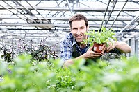Germany, Bavaria, Munich, Mature man in greenhouse with rocket plant