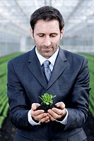 Germany, Bavaria, Munich, Mature man in greenhouse with corn salad (thumbnail)