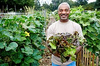 Black man holding lettuce in community garden