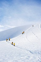 Tourists in yellow jackets climb a frozen hill, antarctica