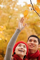 Chinese couple picking autumn leaves