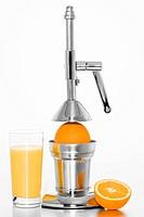 Citrus Press/ Juicer with oranges, glass of juice