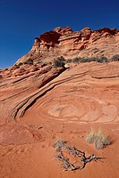Sandstone and red sand, Vermillion Cliffs National Monument, Arizona, United States of America, North America