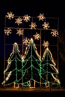 Illuminated wire frame Christmas trees, night