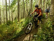mountain bikers riding down a trail