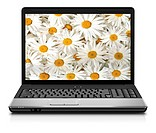 Silver Laptop Computer Showing Search For Flowers On Internet
