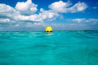 Buoy yellow floating in tropical Caribbean sea
