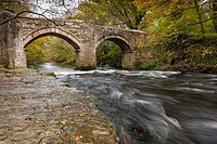 New Bridge over the River Dart in Dartmoor National Park, Devon, England, UK, Europe