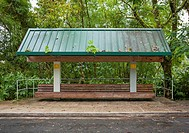 Bus stop bench in the rainforest of El Yunque National Forest, Puerto Rico