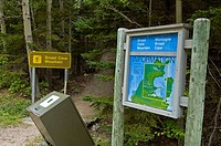 Broad Cove Mtn Trail, Cape Breton Highlands National Park, Nova Scotia, Canada