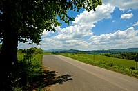 Road, Fields, Blue Sky, Clouds, Spring, East Tennessee