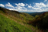 Spring from Newfound Gap Rd, Great Smoky Mountains National Park, TN_NC