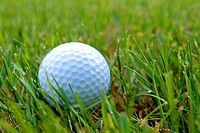 A golf ball in the rough