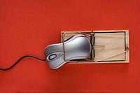 Computer mouse trap.
