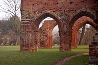 Eldena monastery ruins in the morning light, Wieck, Greifswald, Mecklenburg_Western Pomerania, Germany, Europe
