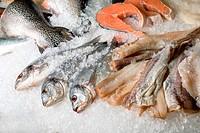 fish sets