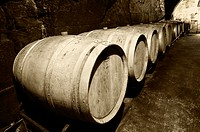 Casks resting in a cellar  Lanciego  Rioja alavesa wine route  Alava  Basque country  Spain