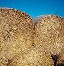 Hay Stacks