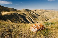 South Saskatchewan River Valley near Beechy, Saskatchewan, Canada