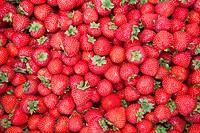strawberries, tammelantori market, tampere, finland, europe