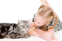 Young girl posing with british shorthair cat