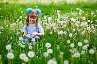 Amongst dandelions