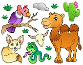 Desert animals collection 1