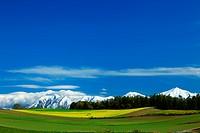Mountainscape at Shikisai hill, Hokkaido
