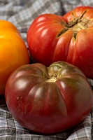 New Jersey heirloom tomatoes
