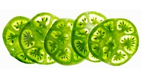 Green tomato slices on a white background