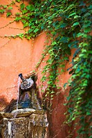 decorative fountain detail with wall water pipe on orange and green ivy in the foreground, Barrio Santa Cruz, Sevilla, Andalucia, Spain