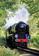 Bullied Pacific No 34053 4-6-2 'Sir Keith Park' thunders through Eyemore woods at Trimpley, Severn Valley Railway, Worcestershire, England, Europe