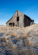 An old rustic barn in a farm field north of Potlach, Idaho