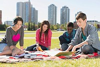 Teenagers doing homework together in outdoor park