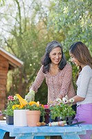 Mother and preteen daughter gardening together