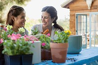 Sisters smiling at each other while repotting flowers