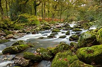 Rocky River Plym near Shaugh Prior in Dartmoor National Park