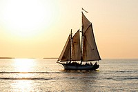 A sailboat full of people is sailing into the sunset before a yellow sky