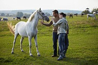 Young couple with white horse on the pasture, Croatia,