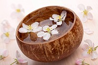white flowers in bowl for spa